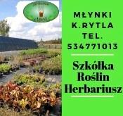 5a737deab3 Napisz do nas  wizjalokalna wp.pl tel. 692 681 498